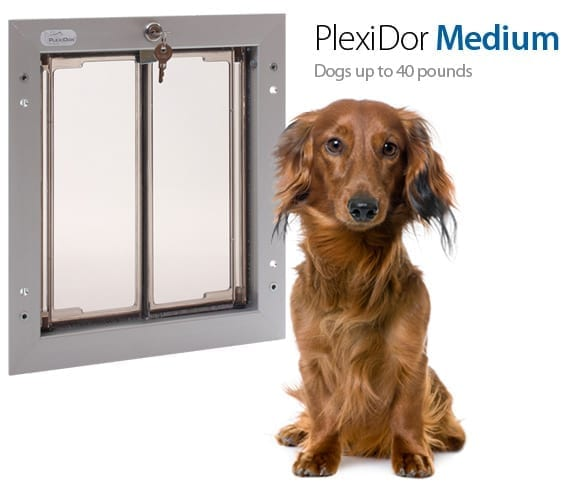 sc 1 st  PlexiDor & Pet Door through Door | Medium Dog Door -