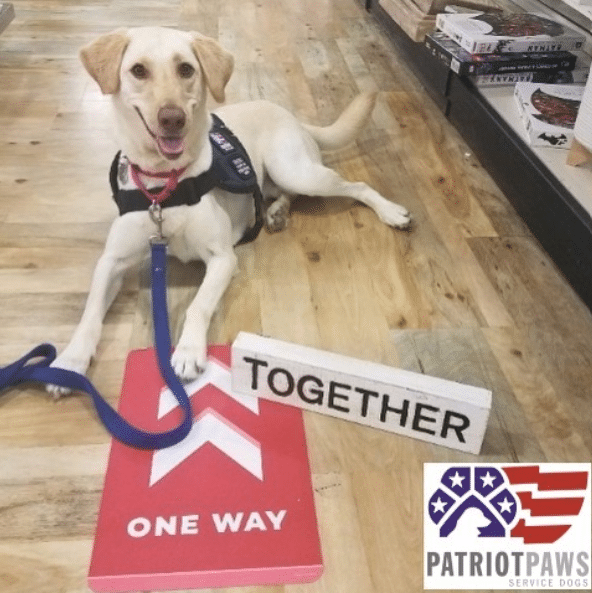 PlexiDor is Patriot PAWS featured partner in July