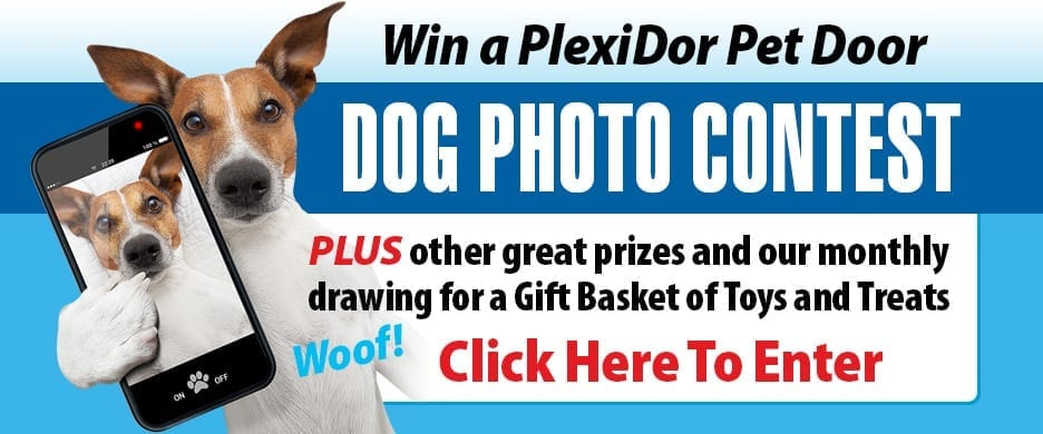 Contest for 1000lbs of dog food!