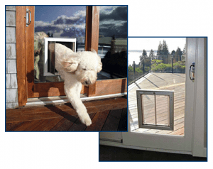 Choose the Right Pet Door Size - PlexiDor Glass Series