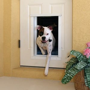 Dog going through PlexiDor Electronic dog door does not have to push open