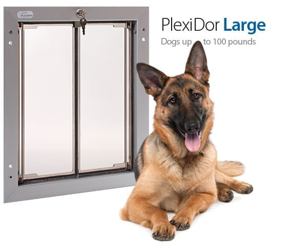 Large Electronic Dog Flap